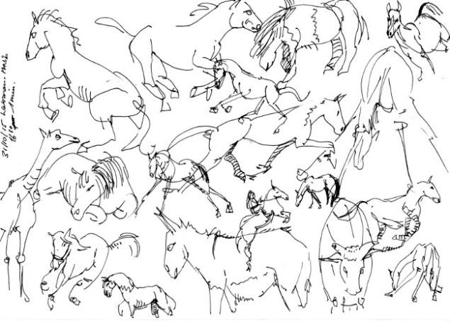 20151031_horses